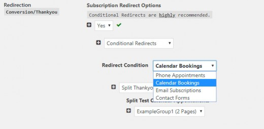 Conditional Redirect Options