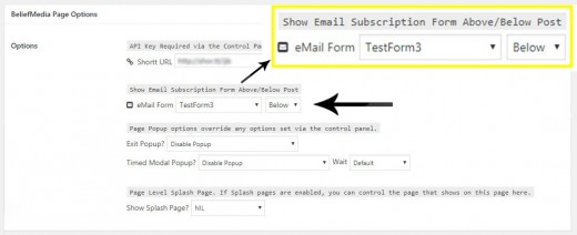 Page Email Options
