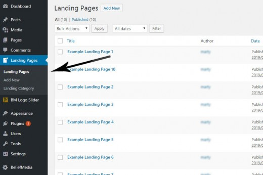 Landing Page Custom Post Type