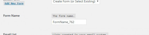 The Form Name